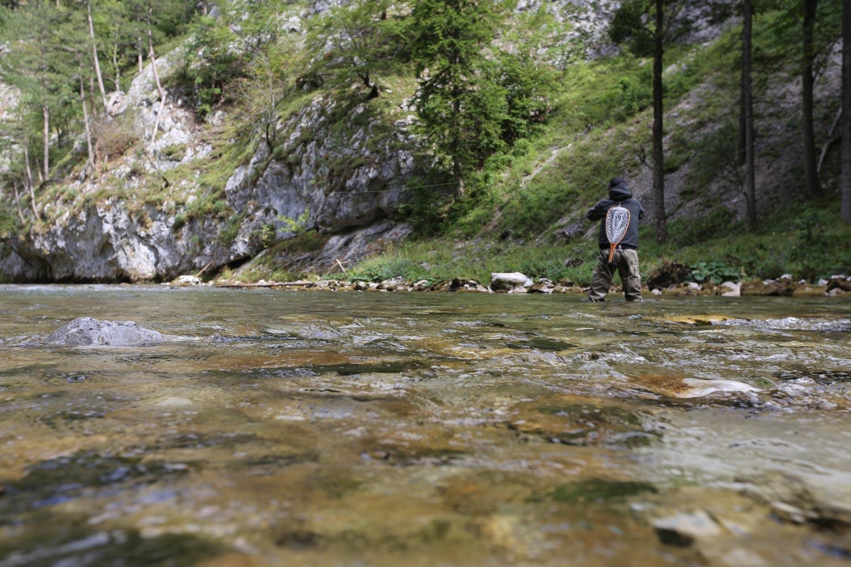 Fliegenfischen Guiding Österreich