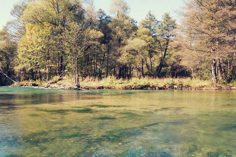 Fliegenfischen Janj Bosnien